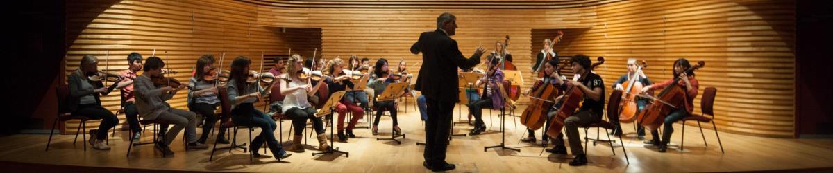 Yehudi-Menuhin-School-Orchestra_header